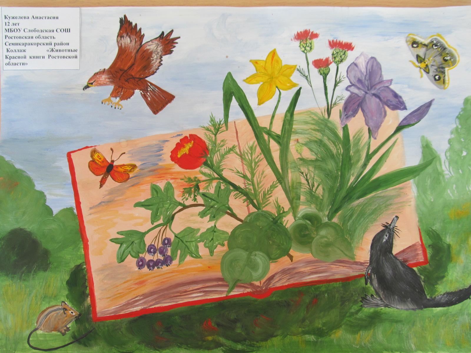 Рисунок растения и животные занесенные в красную книгу