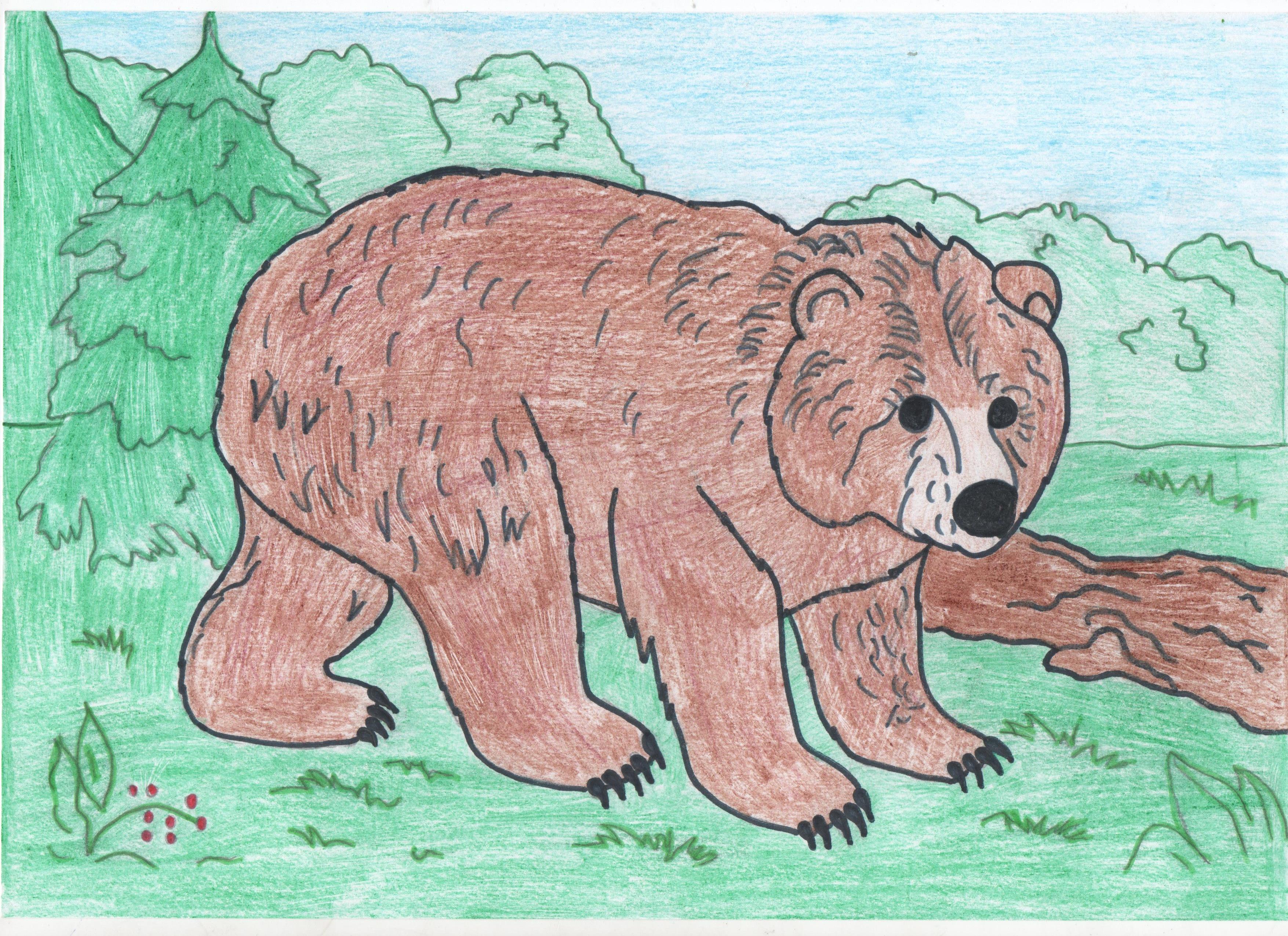 гарантирует омоложение как нарисовать картину медведя показать фото надели белые полуботинки
